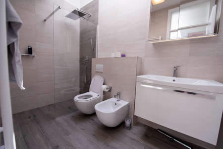 luxury stylish bathroom interior with toilet,bidet sink and spacious glass shower cabin fancy shower on the wall