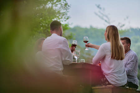 friends toasting red wine glass while having picnic french dinner party outdoor Banque d'images