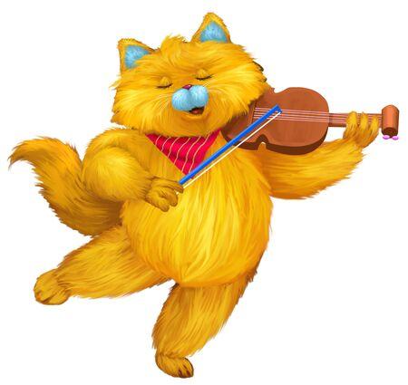cute cat: funny cat