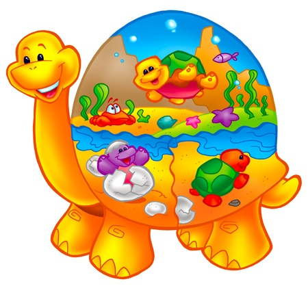 cute and colorful turtle Stock Photo