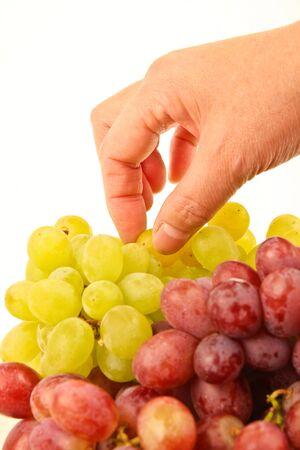 Weibliche Hand pflücken frischen Weintrauben Standard-Bild - 10832075