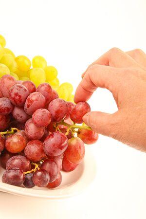 Weibliche Hand Kommissionierung frischen Weintrauben Standard-Bild - 10832071