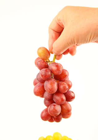 Hand holding Grapes Stock Photo - 10832039