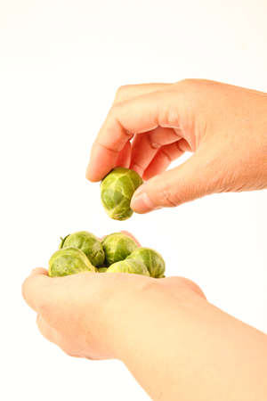 Weibliche Hände halten frische Rosenkohl Standard-Bild - 10832045