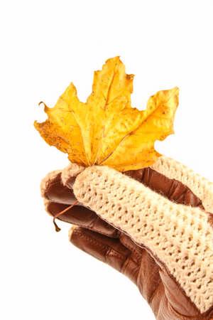 Hand mit Handschuh hält ein Herbst Urlaub. Standard-Bild - 10925857