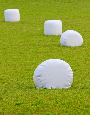 straw bales wrapped in plastic on a green field