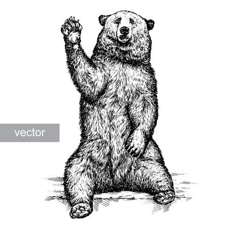 grizzly: graver isolé ours illustration vectorielle croquis. art linéaire