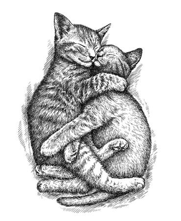 graveren geïsoleerde kitten illustratie schets. lineaire art Stockfoto