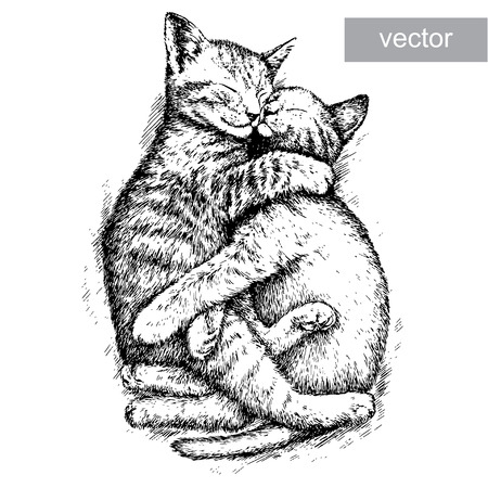 line drawing: engrave isolated kitten vector illustration sketch. linear art Illustration