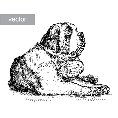 saint: engrave isolated dog vector illustration sketch. linear art
