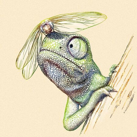malcontent: engrave isolated chameleon illustration sketch. linear art Stock Photo