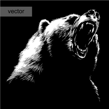 engrave isolated bear vector illustration sketch. linear art Stock Illustratie