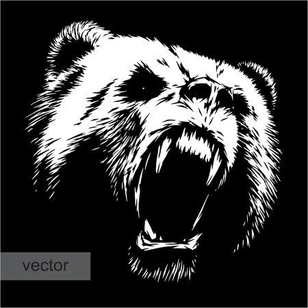 bear: engrave isolated bear vector illustration sketch. linear art Illustration