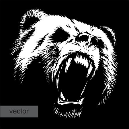 grizzly: graver isol� vecteur ours illustration croquis. art lin�aire Illustration