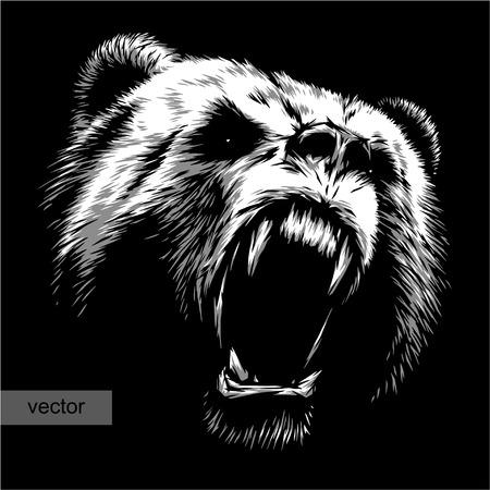 arboles blanco y negro: grabar aislado oso ilustración vectorial boceto. lineal de la técnica
