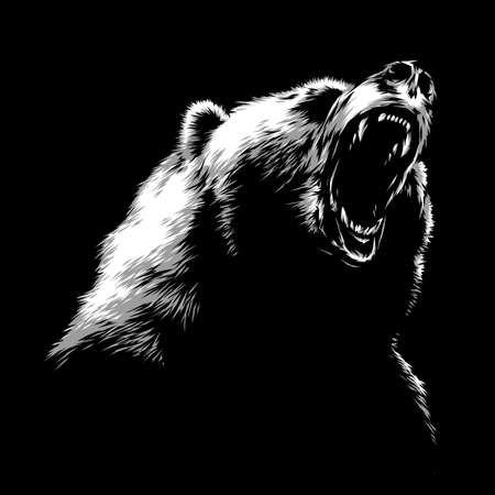powerful: engrave isolated bear illustration sketch. linear art