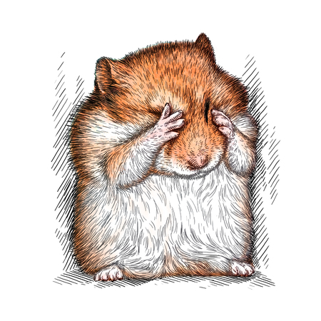hamster: engrave isolated hamster illustration sketch. linear art