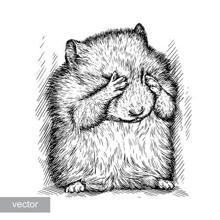 engrave isolated vector hamster illustration sketch. linear art Vettoriali