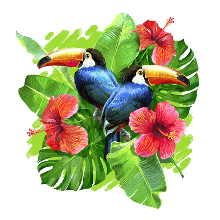 exotic flowers: Tropical composition with monstera leaf, palm banana leaf, hibiscus flower and toucans. Stock Photo