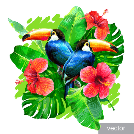 Tropical composition with monstera leaf, palm banana leaf, hibiscus flower and toucans. Vector