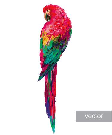 다채로운 앵무새. 아름다운 블루와 골드 잉 꼬. 벡터 일러스트