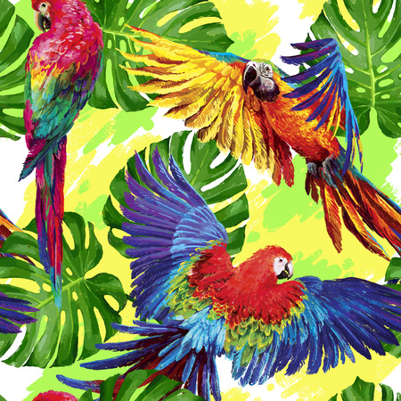 birds of paradise: Seamless summer pattern with tropical parrots and monstera leafs. Exotic textile. Vector.