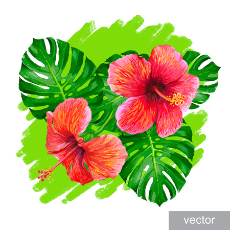 parakeet: Vector  tropical composition with monstera leaf, palm banana leaf, hibiscus flower.