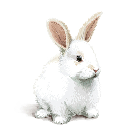 Easter realistic little cute white rabbit illustration Stock Photo
