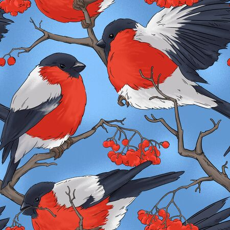 bullfinch: Bullfinch bird winter nature wildlife illustration contour  seamless pattern