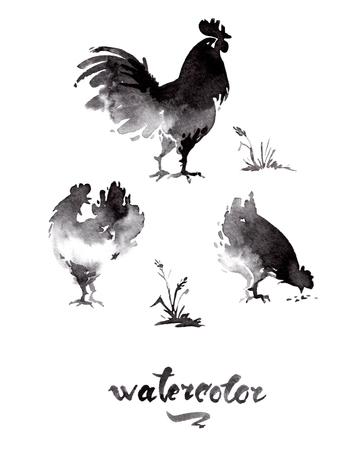 Chicken cock ink watercolor sketch brush hand drawn Stock Photo