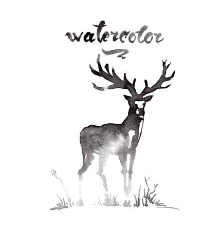 watercolor brush: Deer ink watercolor sketch brush hand drawn
