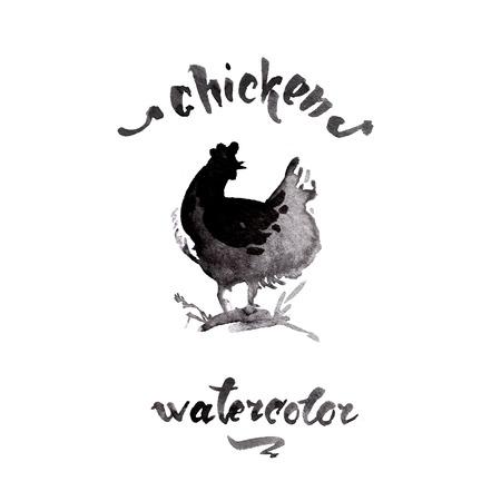 ink sketch: Chicken cock ink watercolor sketch brush hand drawn Stock Photo