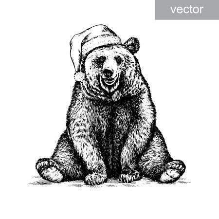 Brown bear, black and white engrave. Christmas hat. vector Illustration