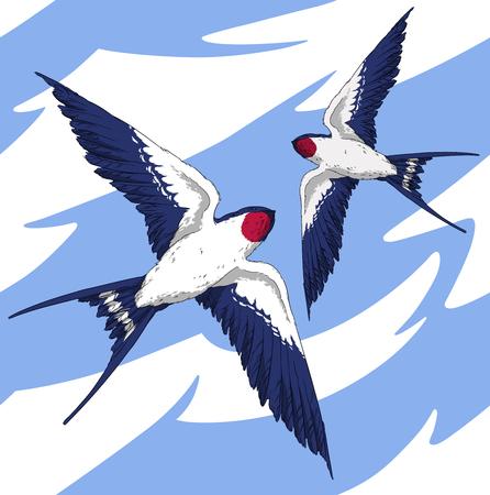 wingspan: seamless pattern fly swallow bird in the sky realistic wings