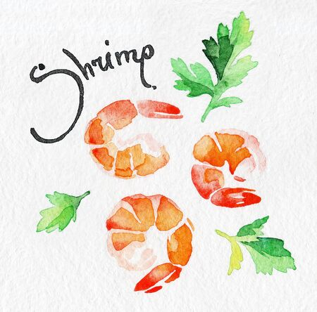 Shrimp, prawn. Seafood, rosemary, greens, parsley. Watercolor hand drawing. Food, vegetables and fruit isolated on white background. Book illustration, recipe, menu, magazine or journal article. Stock Photo