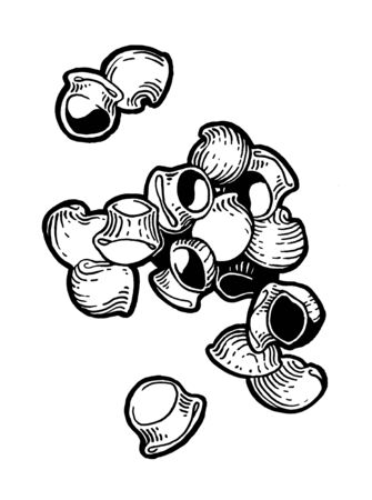 Pasta. Pipe rigate. Ink hand drawing. Black and white. Food, vegetables and fruit isolated on white background. Book illustration, recipe, menu, magazine or journal article. Stock Photo