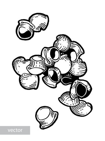 Pasta. Pipe rigate. Ink hand drawing. Black and white. Food, vegetables and fruit isolated on white background. Book illustration, recipe, menu, magazine or journal article. Illustration