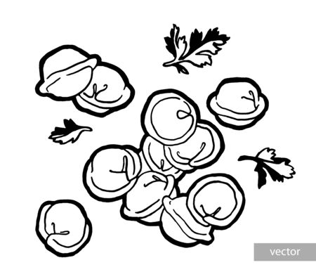 Dumplings in a pot. Ink hand drawing. Watercolor hand drawing. Food, vegetables and fruit isolated on white background. Book illustration, recipe, menu, magazine or journal article Иллюстрация