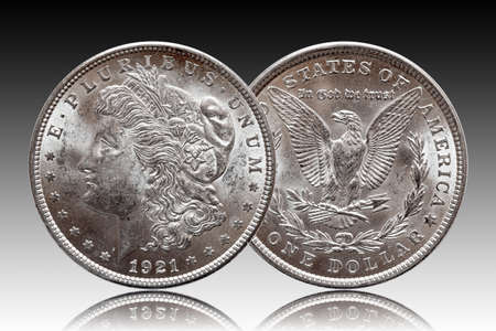 US Morgan Silver Dollar coin minted 1921