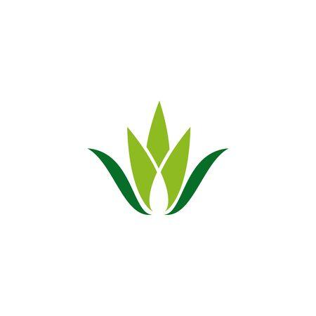 Aloe vera plant logo icon design vector template for beauty salon Banco de Imagens - 133223554