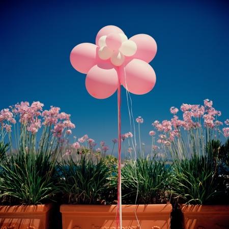 Celebration. BIrthday. Balloons photo
