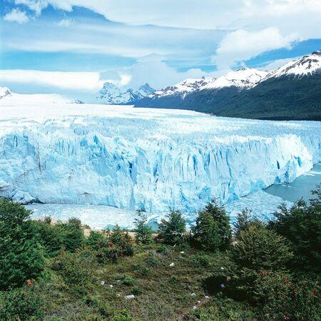 el calafate: Perito Moreno Glacier, El Calafate, Los Glaciares National Park, Santa Cruz province, Argentina Stock Photo