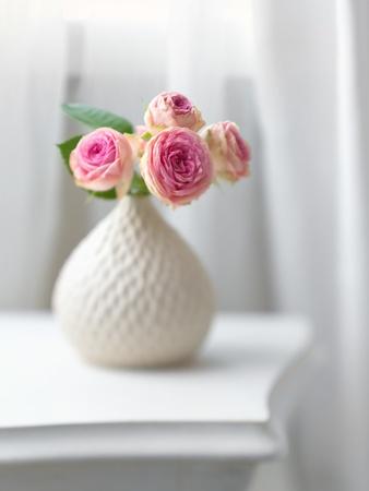 vase: Pink flowers in white vase