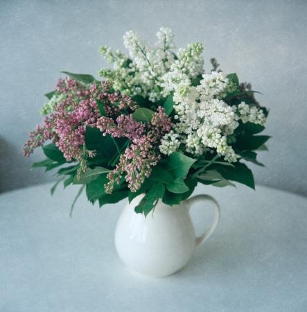 Lilac flowers, still life photo