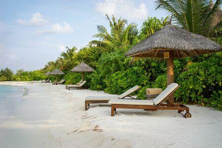 sunbeds: Sunbeds under the canopy on the beach. Maldives