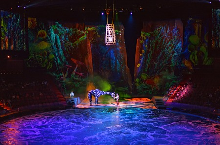 truly: Macau - November 20, 2015: The House of Dancing Water is a truly unique show. Following five years of development, two years of rehearsal, and with production investment running at over USD250 million, this incredible production has become the iconic ente Editorial