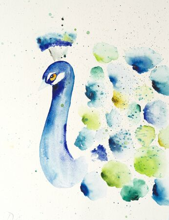 Watercolor painting of peacock. Handmade