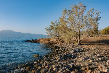 Mirabello bay coast in the early morning Stok Fotoğraf