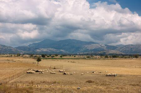 Spectacular view of Lassithi plateau Stok Fotoğraf