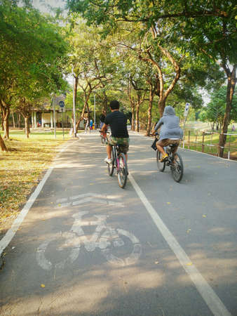People riding bicycle in a park.